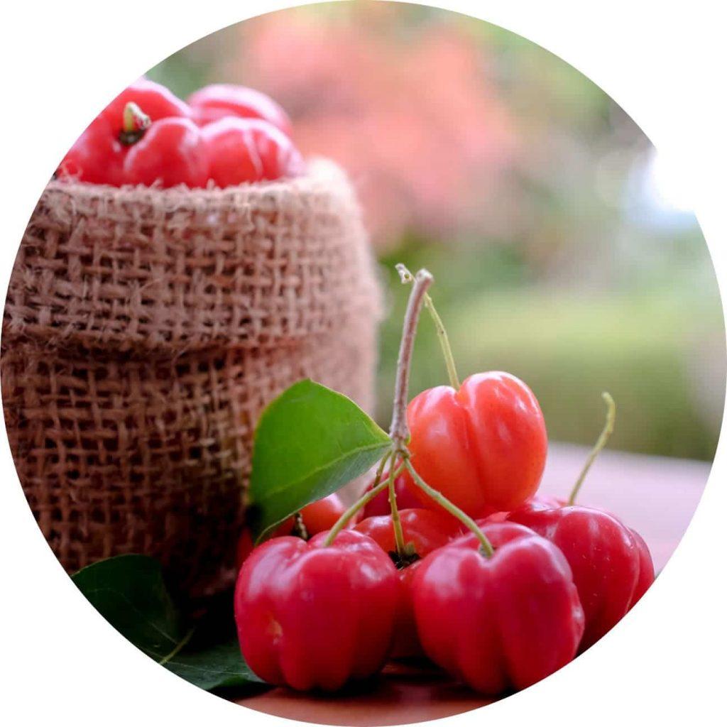 Acerola Superfoods Vetain